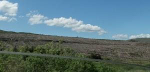 Isle of Skye clear cut